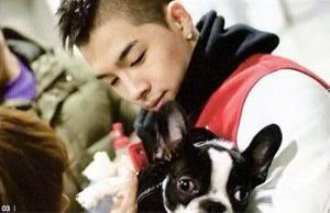 YB Boss