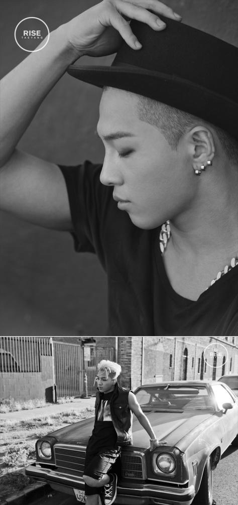 Rise Naver 1